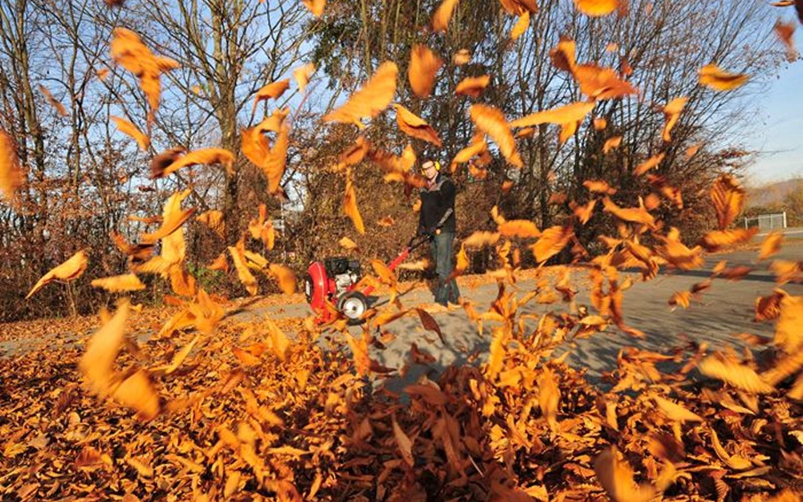 Grundstückspflege im Herbst